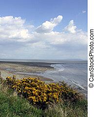 Gower coastline, Wales