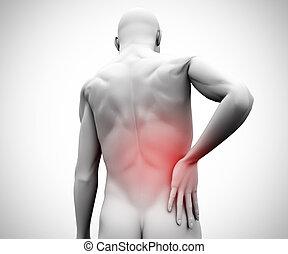 gráfico, figura, con, dolor de espalda