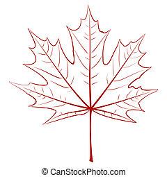 gráfico, folha, maple
