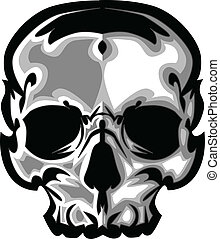 gráfico, imagem, vetorial, cranio