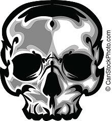 gráfico, imagen, vector, cráneo
