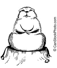 gráfico, postal, vector, plano de fondo, marmota, día