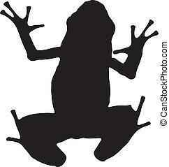 gráfico, silueta, veneno, dardo, vetorial, frog., azure