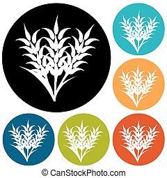 gráfico, trigo, centeno, iconos, visual, empaquetado, ideal, cebada, orejas, o, bread