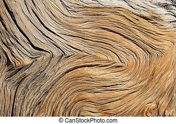 grão madeira, contorted