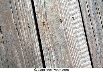 grão madeira