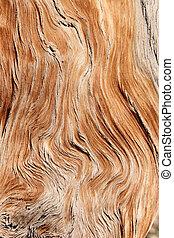 grão madeira, torcido