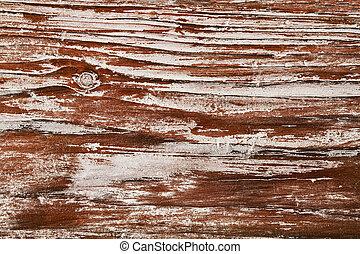 grão, tábua, textura, antigas, madeira, prancha madeira, fundo