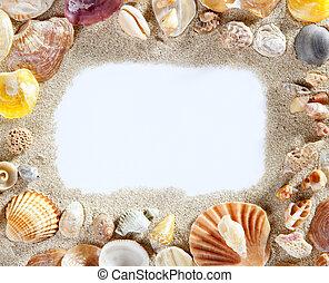 gräns, ram, sommar, strand skal, tom, avskrift tomrum