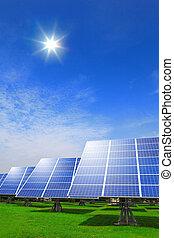 gräs, grön, system, solar panel