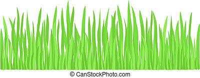 gräs, grön, (vector)