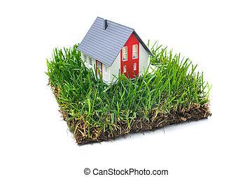 gräs, hus, grön