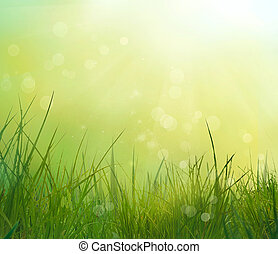 gräs, in, fjäder
