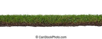 gräs, med, rötter, och, smuts