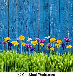 gräs, och, blomningen