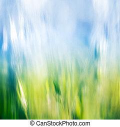 gräs, och, sky, abstrakt