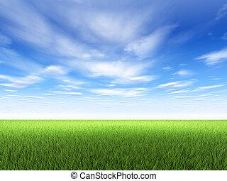 gräs, och, sky