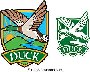 gräsand ducka, flygning, emblem