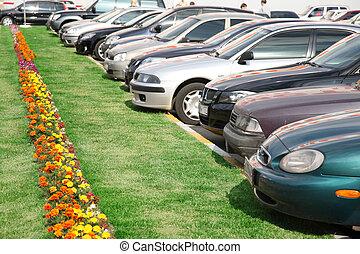 gräsmatta, parkering
