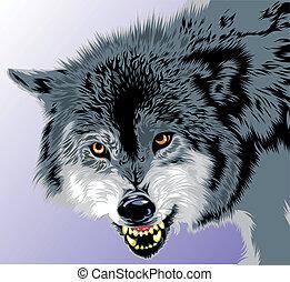 grå varg