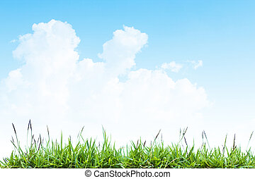 græs, sky.