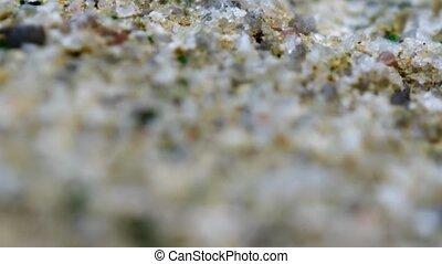 grès, grain, extrême, lâchement, closeup, grossier, accreted