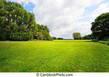 grön, beskaffenhet landskap