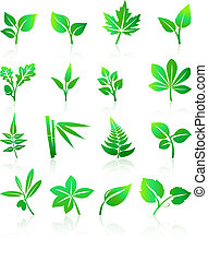 grön, det leafs, ikonen