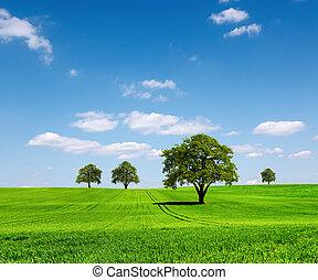 grön, ekologi, landskap
