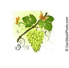 grön, filial, druvor