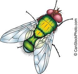 grön, fluga