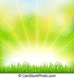 grön fond, med, grönt gräs, och, sunburst