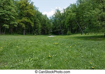 grön gräsmatta, med, träd, i park