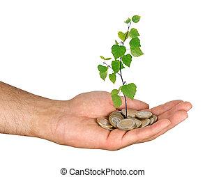 grön investering, affär
