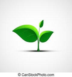 grön leaf, logo.