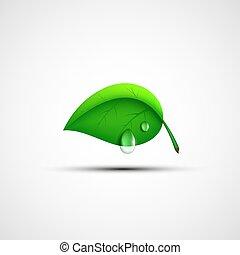 grön leaf, logo, med, a, droppe, av, water.