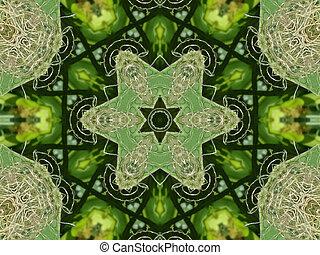 grön,  Mandala, stjärna