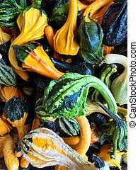 grön, och, apelsin, dekorativ, kalebasser