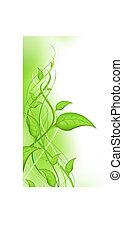 grön, spira, med, bladen