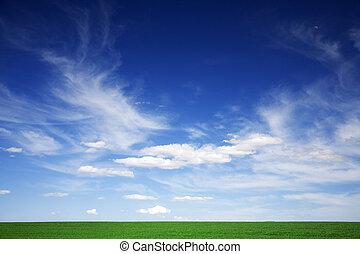 gröna gärde, blå himmel, vita sky, in, fjäder