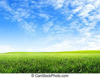 gröna gärde, och, skyblåttar, med, vita sky