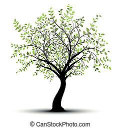 gröna vita, vektor, träd, bakgrund