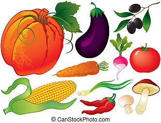 grönsak, sätta