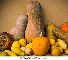 grönsaken, ännu, liv
