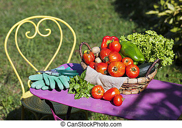 grönsaken, Trädgård