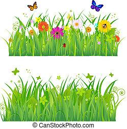 grönt gräs, med, blomningen, och, kryp