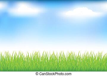 grönt gräs, och blåa, sky
