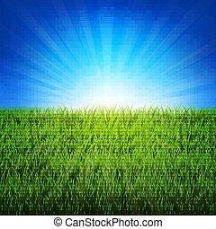 grönt gräs, sunburst, bakgrund, natur