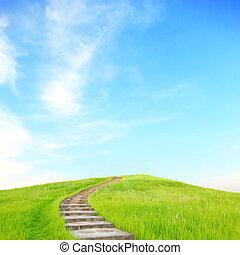 grönt gräs, trappor uppe