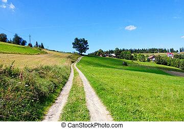 grönt landskap